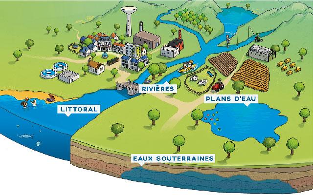 L'infographie présente l'illustration stylisée d'un bassin versant simplifié permettant de mettre en exergue 4 milieux naturels : les rivières, les plans d'eau, le littoral et les eaux souterraines. Les usages et les activités humaines y sont symbolisés de manière non exhaustive.