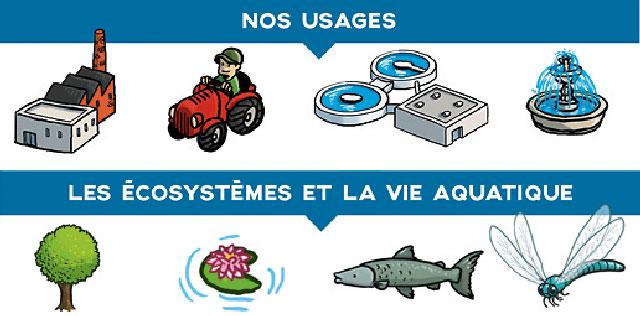 L'infographie stipule que l'eau doit être de qualité et en quantité suffisante, à la fois, pour les usages et pour les écosystèmes et la vie aquatique. Les usages, les écosystèmes et la vie aquatique sont symbolisés par des illustrations.